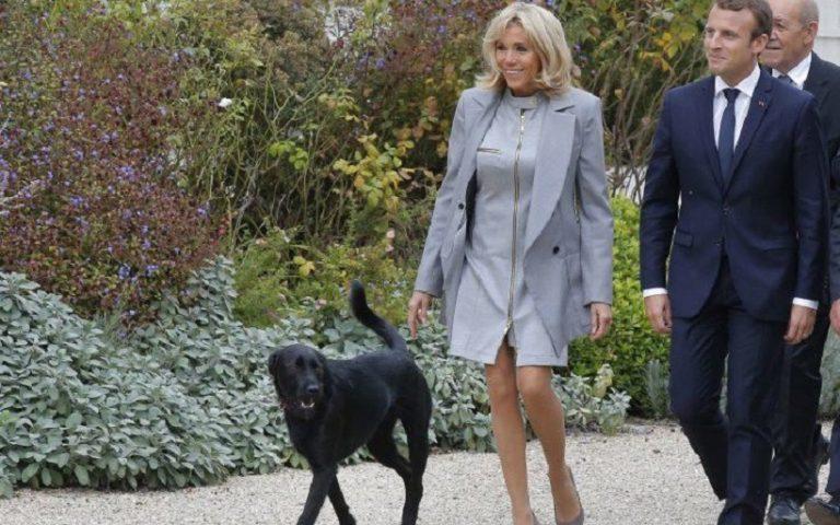 Μπριζίτ Μακρόν : Βραδινή βόλτα με τον προεδρικό σκύλο Νέμο | to10.gr