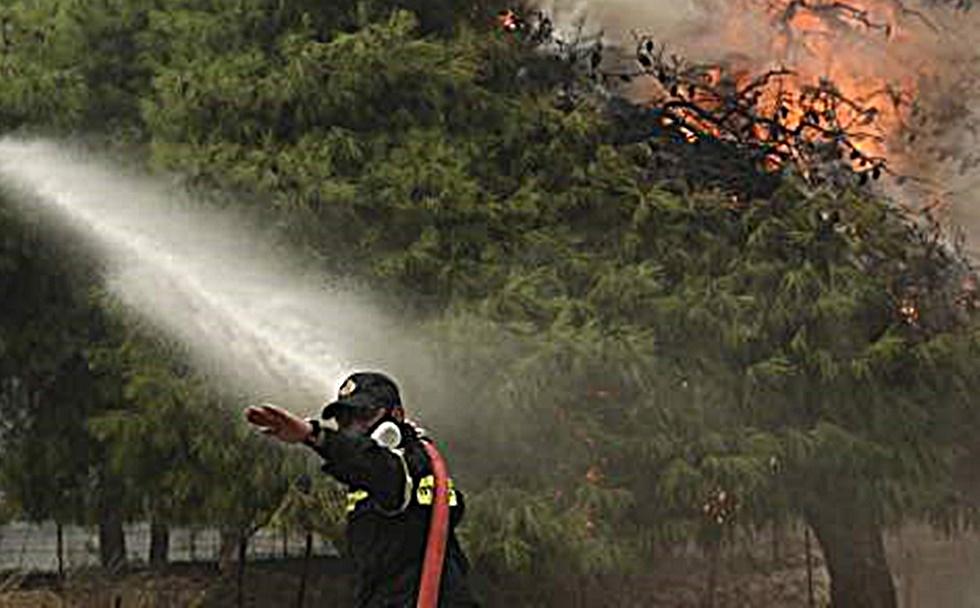 Σε εξέλιξη δυο μεγάλες φωτιές στη Φθιώτιδα | to10.gr