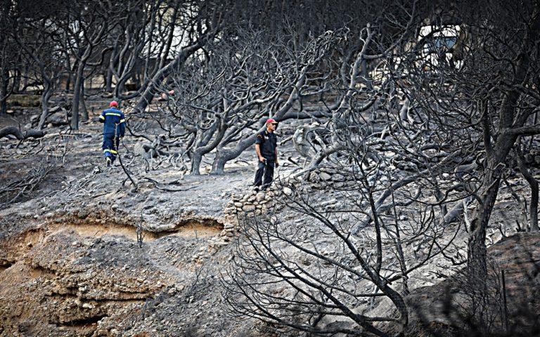 Εθνική τραγωδία σε επανάληψη   to10.gr