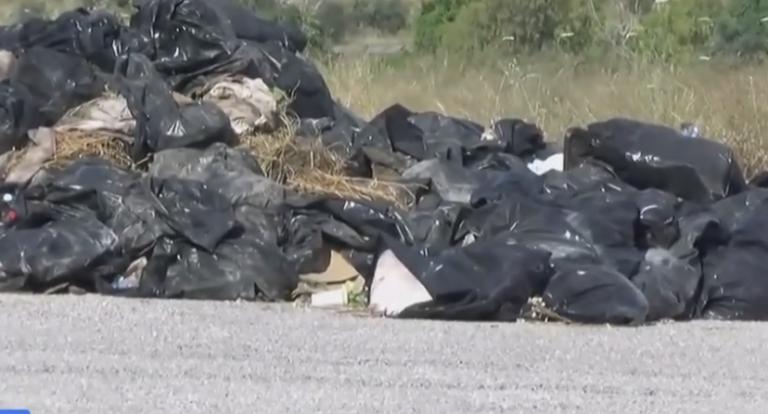 Εικόνες ντροπής στο νεκροταφείο Σχιστού – Σοβαρό ζήτημα δημόσιας υγείας | to10.gr