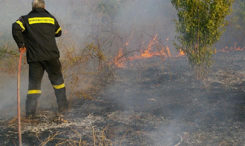 Υπό έλεγχο οι φωτιές σε Μαραθώνα και Ασπρόπυργο | to10.gr
