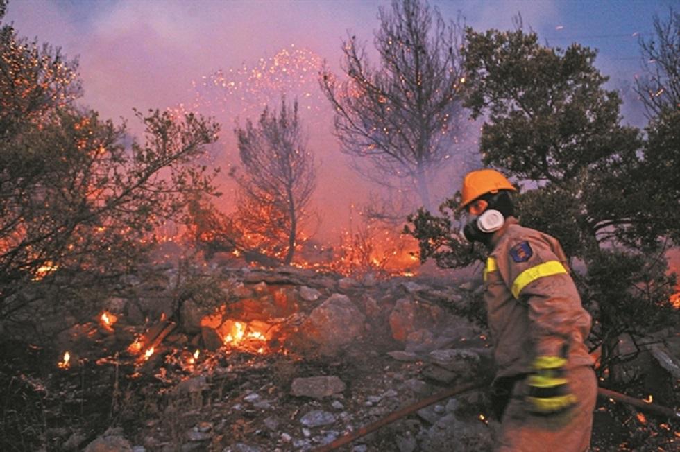 Σε 12 λεπτά κάηκαν 300 στρέμματα   to10.gr
