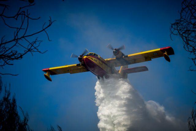 Ανεξέλεγκτη η πυρκαγιά στη Θήβα – Ενισχύονται οι δυνάμεις της Πυροσβεστικής | to10.gr