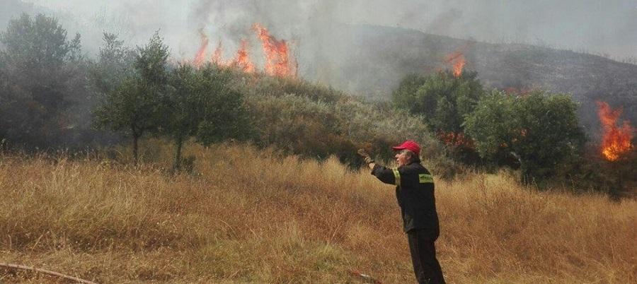 Φωτιά στο Μουζάκι Ζακύνθου | to10.gr