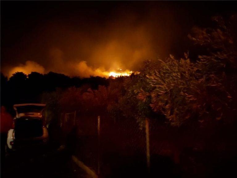 Μαίνεται η μεγάλη πυρκαγιά στη Νέα Μάκρη – Μάχη να μη φτάσουν οι φλόγες στα σπίτια | to10.gr