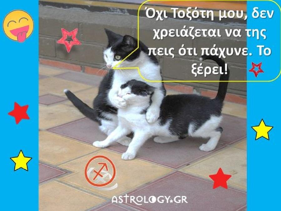 5… αλήθειες για τον Τοξότη: Αντέχεις να τις μάθεις; Μερικές πονάνε, γι' αυτό, πρόσεχε!   to10.gr