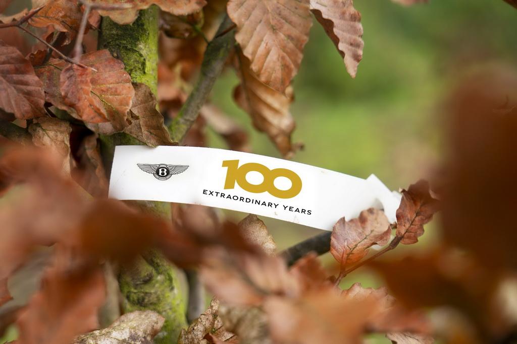 Εκατό δέντρα για τα 100 χρόνια της Bentley | to10.gr