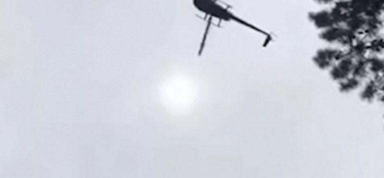 Έριξαν από ελικόπτερο γουρούνι σε πισίνα επιχειρηματία! (vid) | to10.gr