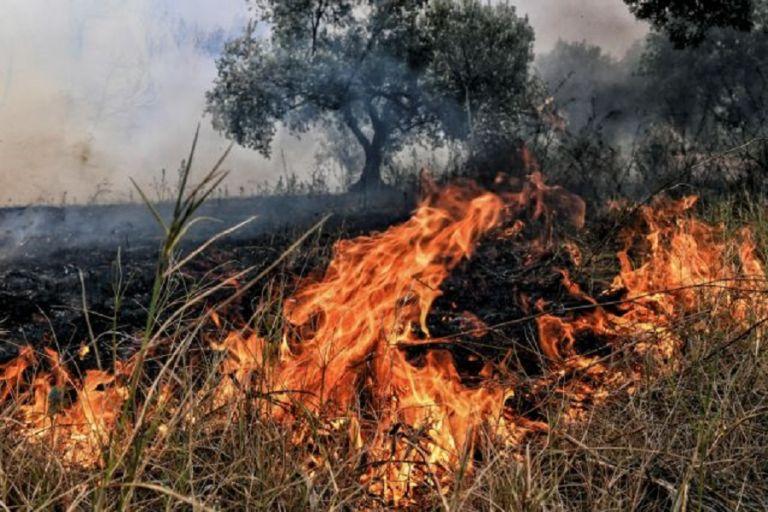 Μεγάλη φωτιά στο Πέραμα   to10.gr
