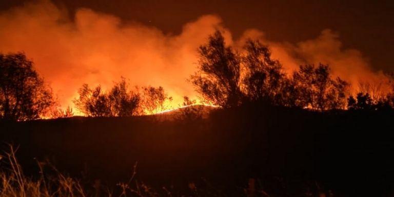 Έβρος : Οργανωμένο σχέδιο εμπρησμών εξετάζουν οι αρχές – 15 φωτιές το τελευταίο 48ωρο | to10.gr