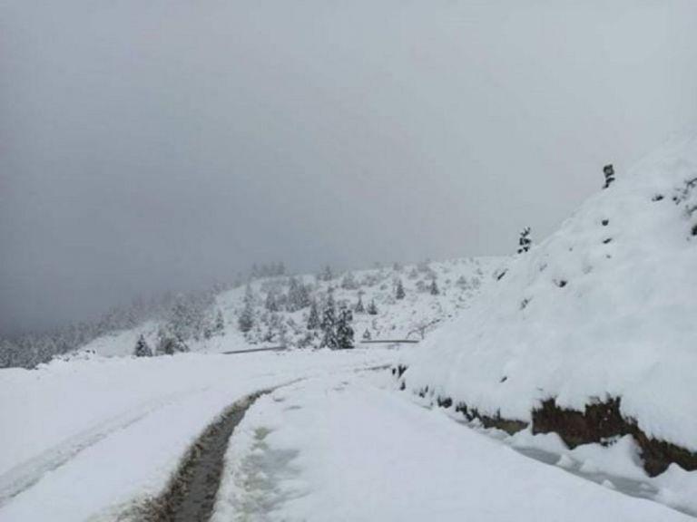 Καιρός : Στην «κατάψυξη» και την Κυριακή η χώρα – Χιονοπτώσεις και… πολικές θερμοκρασίες   to10.gr