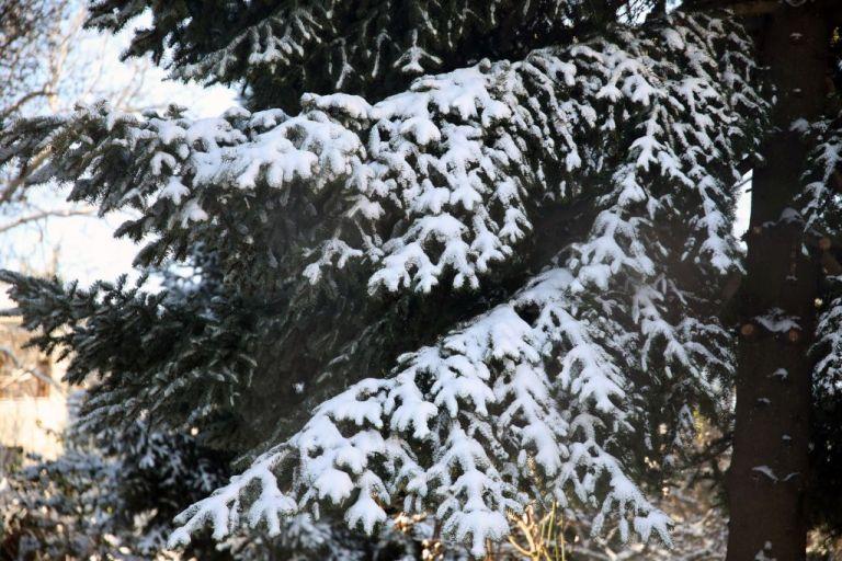 Πού διακόπτεται η κυκλοφορία των οχημάτων λόγω των έντονων χιονοπτώσεων | to10.gr