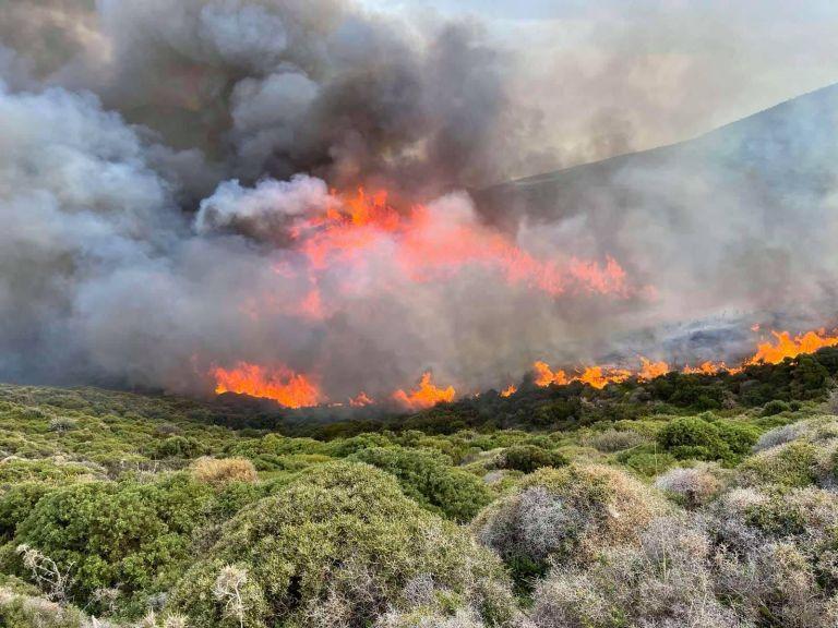 Ενισχύονται οι πυροσβεστικές δυνάμεις στην Άνδρο – Εξαπλώθηκε η φωτιά   to10.gr