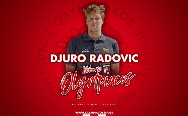 Και ο Ράντοβιτς στην Dream Team του Θρύλου! | to10.gr