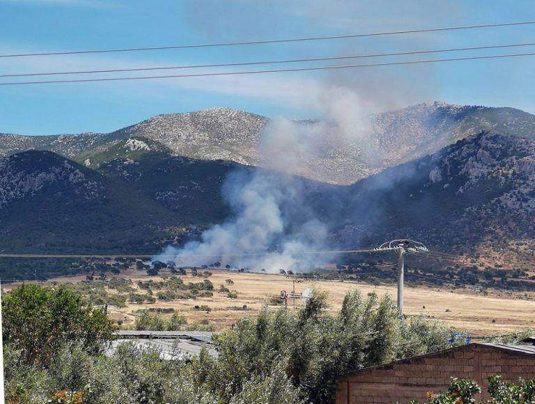 Πυρκαγιά σε δασική έκταση στα Μέγαρα – Επιχειρούν ισχυρές δυνάμεις της Πυροσβεστικής | to10.gr