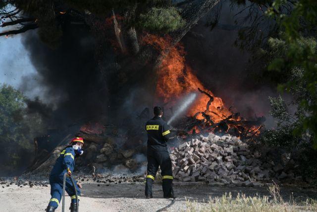 Συναγερμός μετά από μεγάλη φωτιά στη Δροσιά Αχαΐας – Εκκενώνεται οικισμός | to10.gr