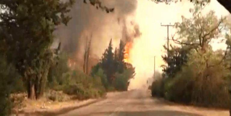 Ανεξέλεγκτη η πυρκαγιά στην Βαρυμπόμπη – «Καίγονται σπίτια – Να φύγουν όλοι» | to10.gr