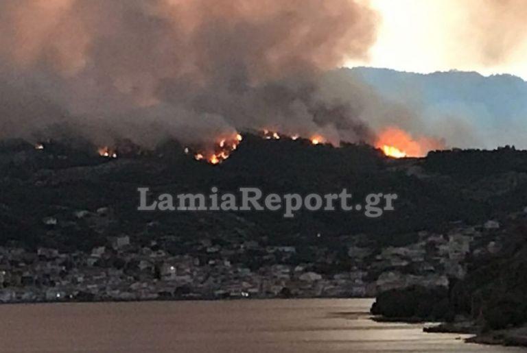 Λίμνη Εύβοιας – Η θάλασσα σταμάτησε τις φλόγες, κάηκαν σπίτια – Τρία τα μεγάλα μέτωπα | to10.gr