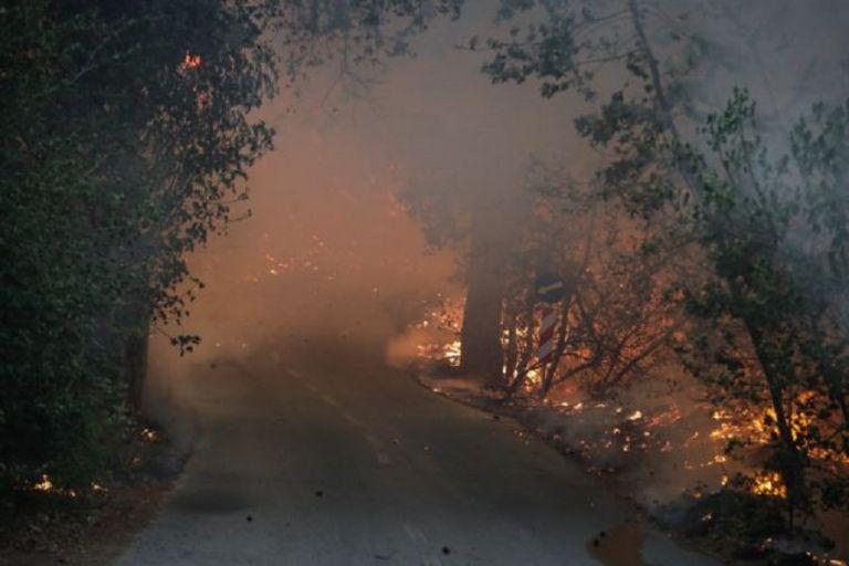 Λέκκας για Βαρυμπόμπη – Κάηκαν περίπου 30.000 στρέμματα – Τα αίτια της φωτιάς | to10.gr